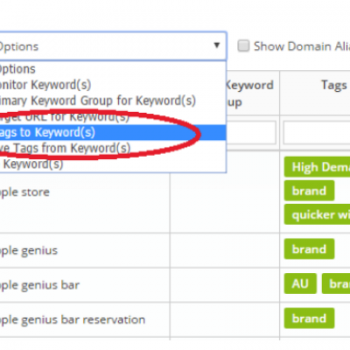 Authoritas Keyword Tagging Feature